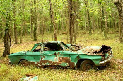 woodland cars 7